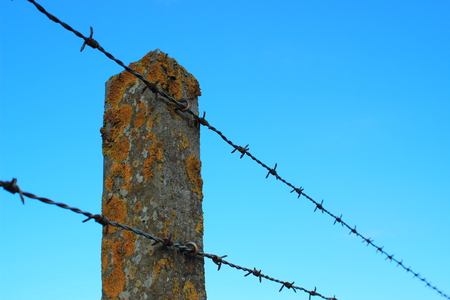 Perspective of barbed wire on an old cement pole with alga photo