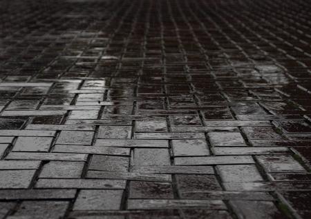 lluvia acida: H�medo camino de baldosas negro despu�s de fuertes lluvias Foto de archivo