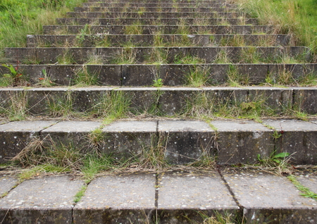 weed block: Concrete brick stair steps with green weed