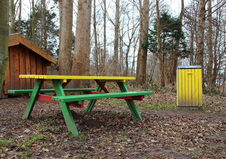 seating area: Outdoor Rest Area in Autumn Forest with Colorful Bench and Garbage Bin