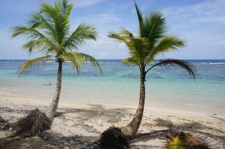 impressions: caribbean impressions
