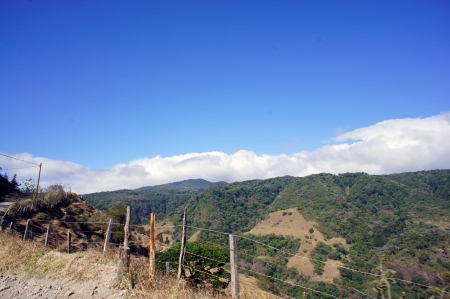 impressions from landscapes in sunny costa rica photo