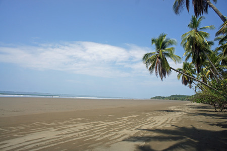 nature paradiese costa rica in central america photo