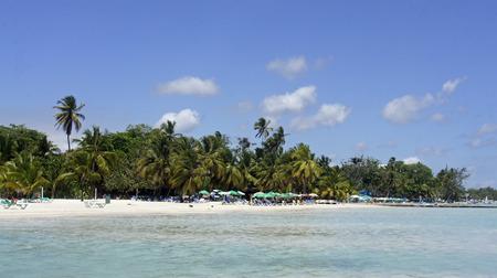 the caribbean beach in boca chica