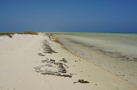atoll: lovely atoll qulaan islands in the red sea