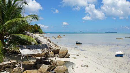 cidra: tropical cidra anse playa en Praslin