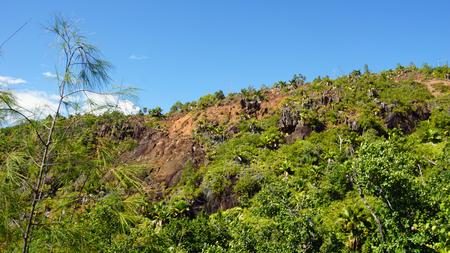 seychelles: green landscpae on seychelles islands