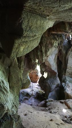 ko: green rainforest on ko lanta island in thailand