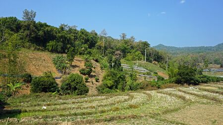doi: landscape in doi inthanon national park Stock Photo