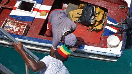 thunnus: fresh from the ocean yellow fins tuna