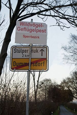domestics: h6n1 desease in schleswig holstein in germany