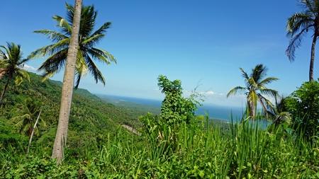 uitkijkpunt in samana over geweldige groene tropische landschappen Stockfoto