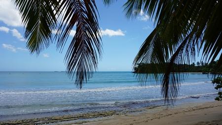 bonita beach on samana in the dominican republic