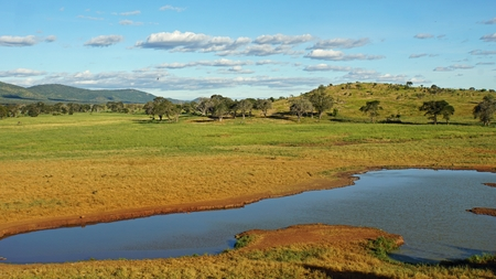 scenic landscape around a water whole in kenyan national park