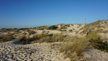 scenic landscape with the sand dunes of portugal Standard-Bild - 114258410