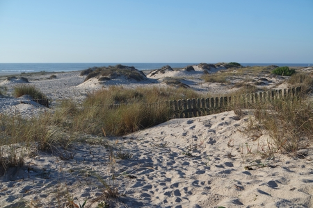 scenic landscape with the sand dunes of portugal Standard-Bild - 114258414