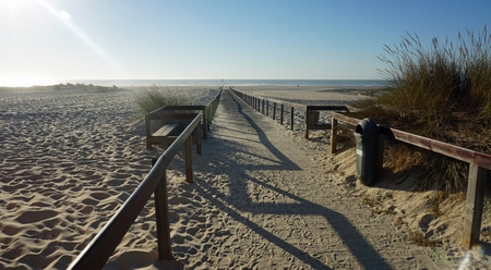 romantic afternoon on the sand dunes of aveiro in portugal Standard-Bild - 114258368