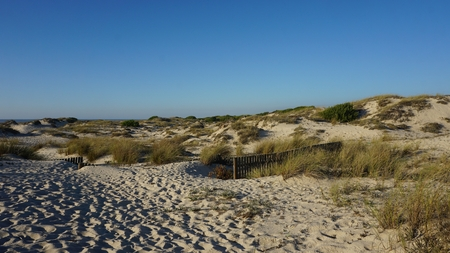 scenic landscape with the sand dunes of portugal Standard-Bild - 114258373