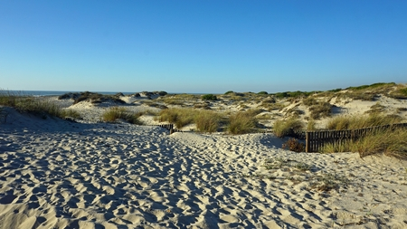 scenic landscape with the sand dunes of portugal Standard-Bild - 114258329