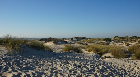 scenic landscape with the sand dunes of portugal Standard-Bild - 114258331