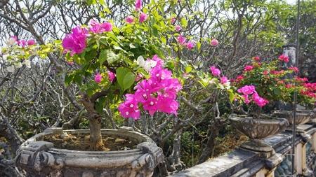 amazing phra nakon kiri tempel in thailand Standard-Bild - 120714582