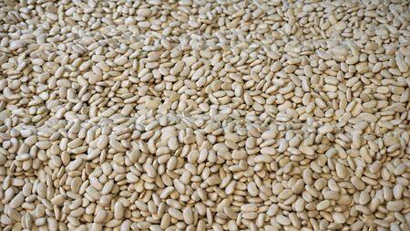 fresh nuts from the big market in skopje