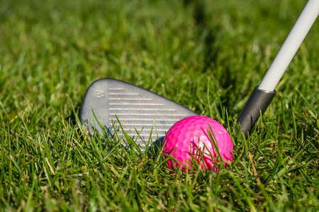 Iron behind a pink golf ball