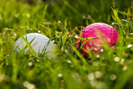 A pink and a white golf ball are lying in the rough.