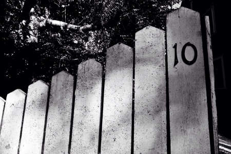fence: BW picket fence in Nantucket.
