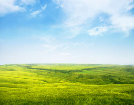 non cultivated: Serene hilly meadow Stock Photo