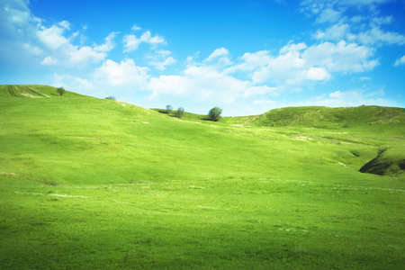 Serene hilly meadow photo