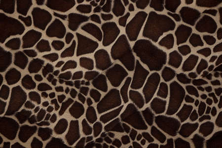 animal skin: Texture of giraffe skin - photo of synthetic material