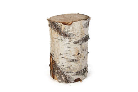 Isolated photo of birch stump on white background