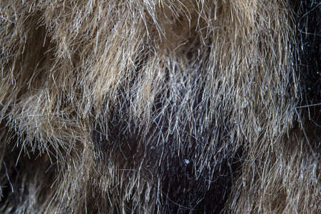 Photo of the fake brown fur - macro shot photo