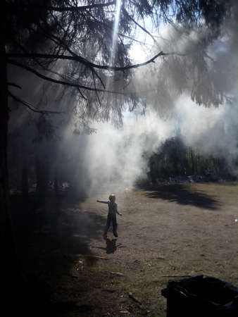 shrouded: Mobile photo of a boy running through forest shrouded in smoke