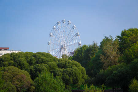 Ferris wheel among green trees in the summer