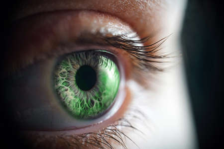 Macro photo of the womans green eye