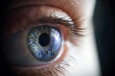 Macro photo of the womans blue eye