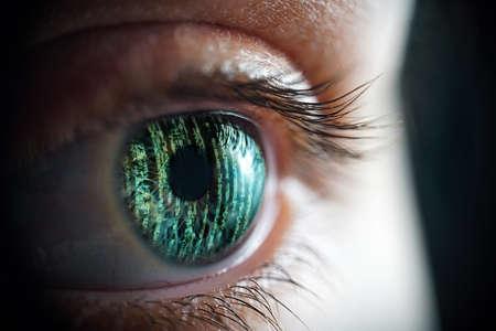Macro photo of the womans matrix eye