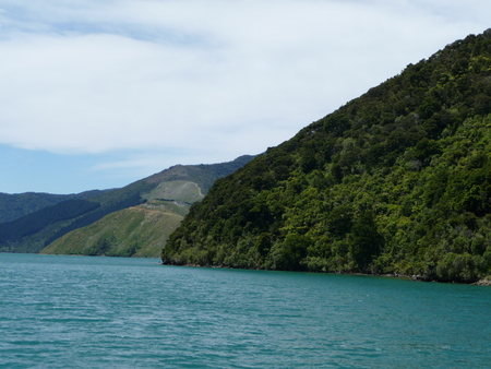 sounds: New Zealands landscape while a cruise at Marlborough Sounds