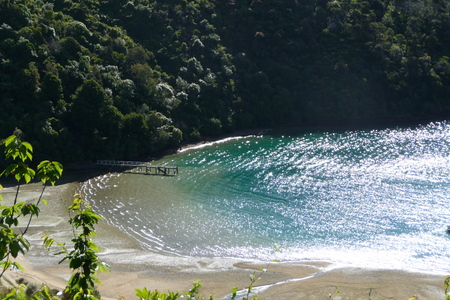 secluded: secluded bay of New Zealands South Stock Photo