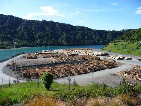 Wood storage in New Zealand