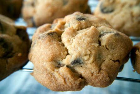 choc: chocolate chip cookies