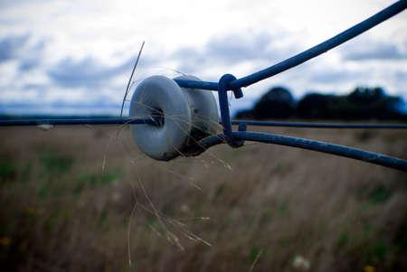elektrischer Zaun: Elektrozaun mit landwirtschaftlichen Hintergrund