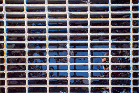 metal grate: top view looking down onto a metal grate over a drain filled with water