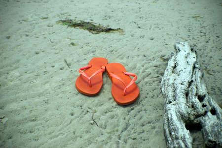 thongs: orange beach thongs on sand with driftwood