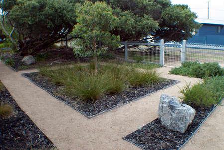 landscaped drought tolerant garden