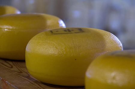 Cheese in a dutch store