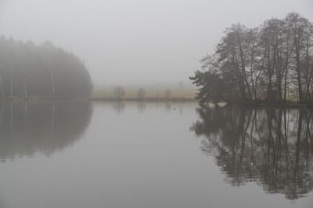 A pond on a foggy day Stock Photo