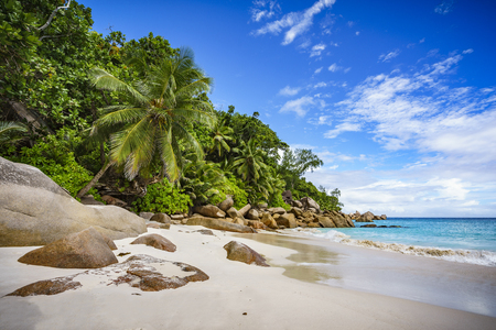 Palm trees and granite rocks in the white sand on seychelles beach. Simply paradise... Stock Photo